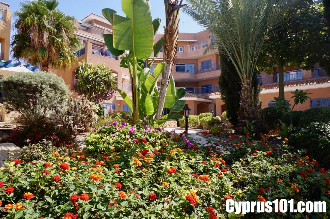 Kato-paphos-cyprus-property