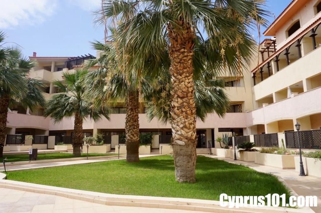 Kato Paphos Penthouse