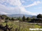14-Kannaviou-bungalow-paphos-cyprus
