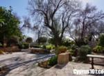7-Mesogi-stone-house-for-sale-Cyprus
