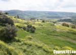 9-Nata-property-Paphos-Cyprus