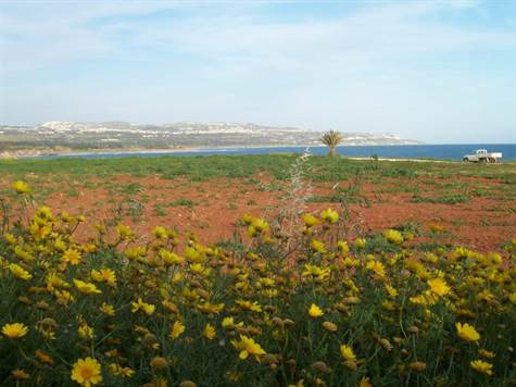 Agricultural Land in Cyprus – New Laws