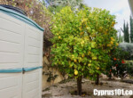 12-Kamares--paphos-cyprus