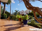 Mesogi Villa for sale Paphos