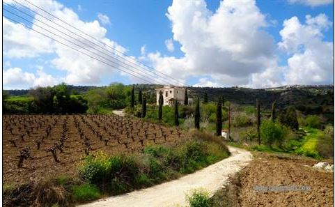 Peaceful, Rural Setting in Letymbou -near Kallepia – Paphos area for Sale