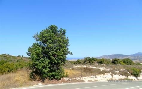 Cyprus Land In Paphos Near Kathikas Kato Akourdalia