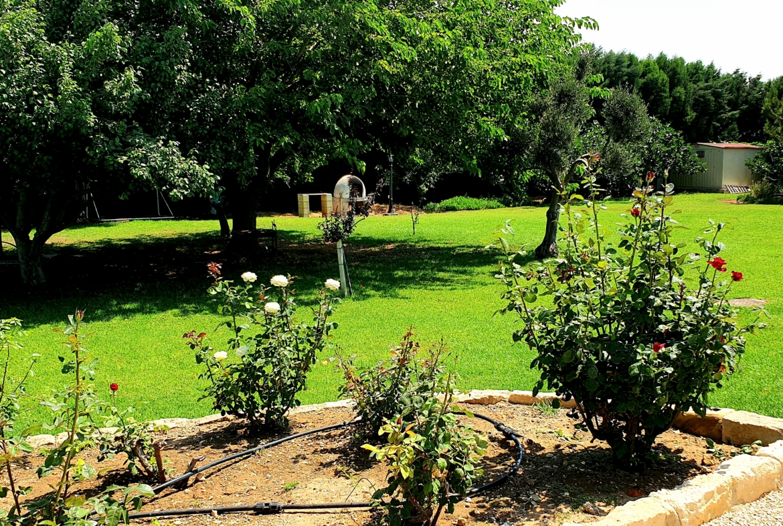 Timi villa Paphos