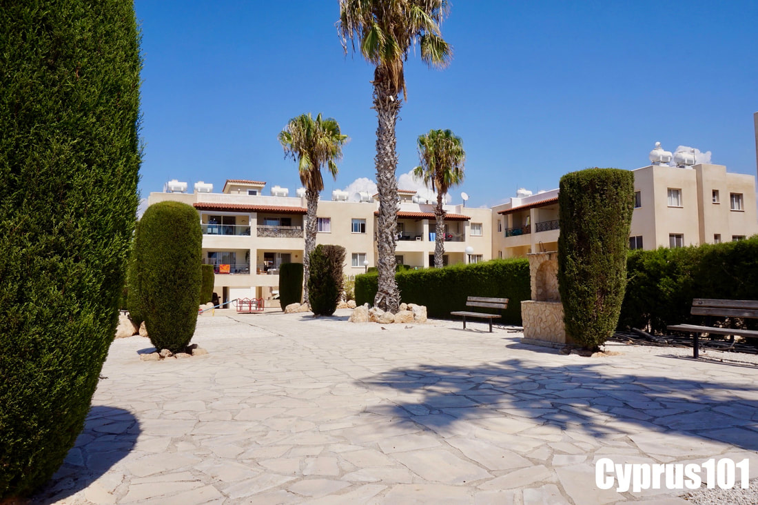 Chloraka Paphos Cyprus #1018